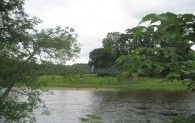 River Tweed, Dryburgh 1