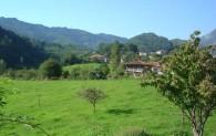 landscape-Camino